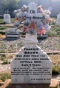 The Grave of Frankie Brown
